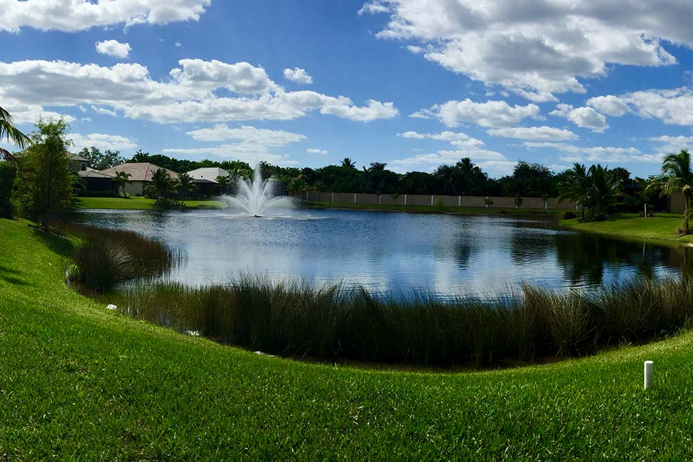 Savona Bay Lake preserve panoramic